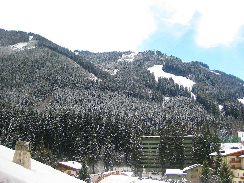 Saalbach Trees on Mountains