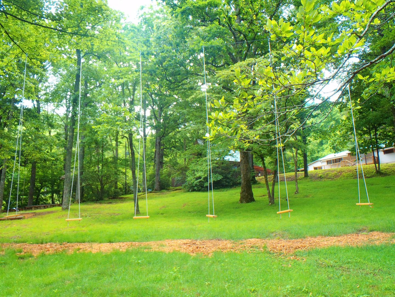 Swings Camp Blue Ridge