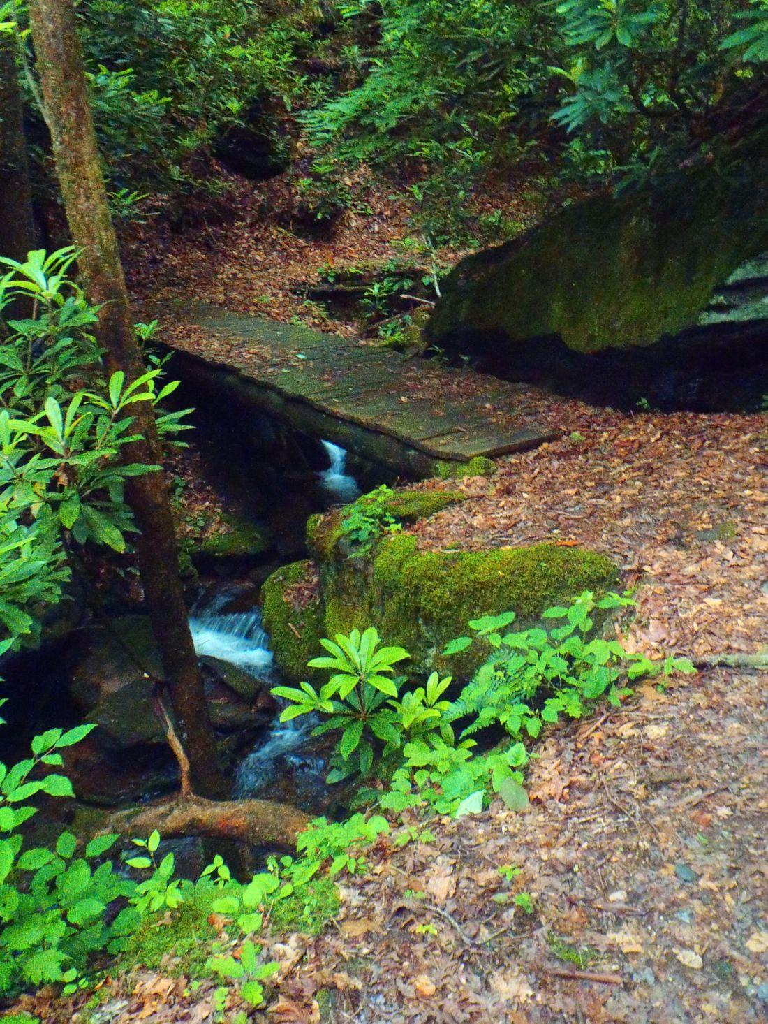 Walk to waterfall