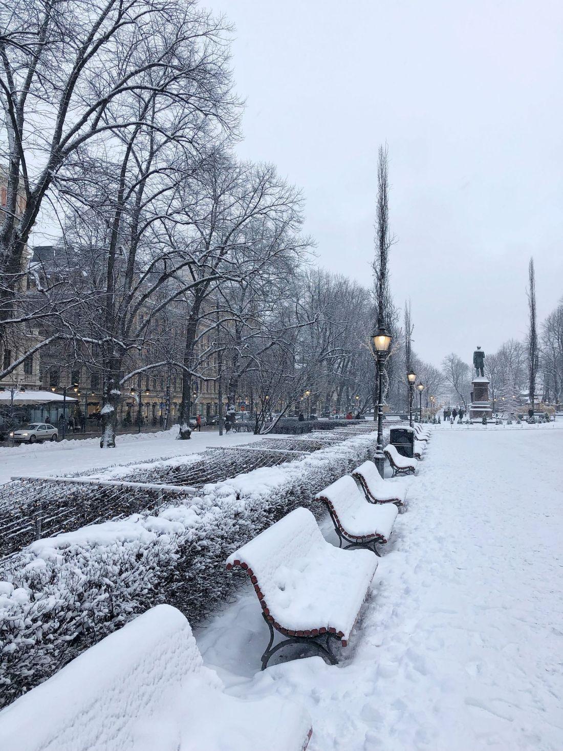 Snowy Helsinki Park