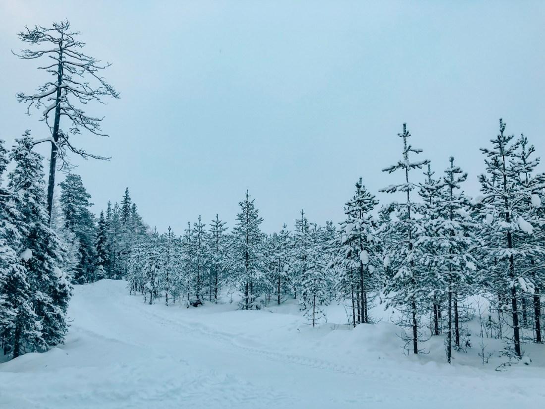 Finnish Lapland Rovaniemi