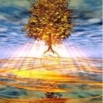 Tree House Wellness Day