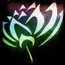 Open Lotus Studio