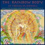 Steven Ross - Austin Rainbow Body