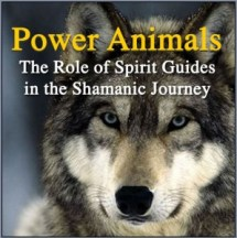 Gerry Starnes - Book - Power Animals: The Role of Spirit Guides in the Shamanic Journey