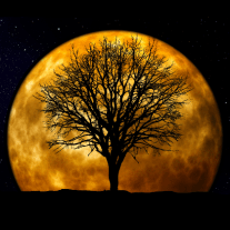 Valeri Glover - The Power of Positive Thought and Manifesting Your Dreams For the Full Moon - Workshop at Mother Earth Healing Center