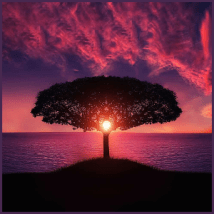 The Austin Alchemist Media Company offers body mind spirit news resources and events - tree silhouette sunset