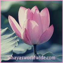Isvari Ishaya - Ishayas Ascension - The First Sphere - Weekend Workshop in Austin Texas