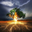 Clearing Energies: It's Not Just About Ghosts