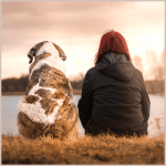 the-austin-alchemist-media-company-offers-body-mind-spirit-news-resources-and-events-pets-dog-woman-light-sunset