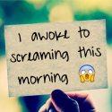 I awoke to screaming this morning