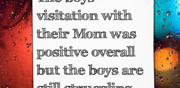 The boys visitation with their Mom was positive overall but the boys are still struggling