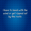 I have to bend with the wind or get ripped out by the roots