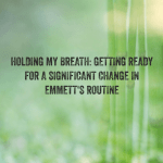 Holding My Breath: Getting ready for a significant change in Emmett's routine