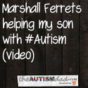 How @MarshallFerrets helping my son with #Autism (video)