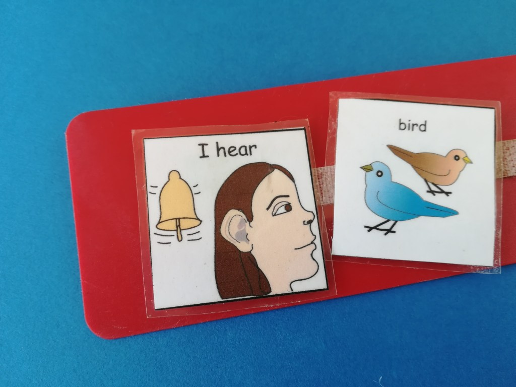 i hear bird pecs