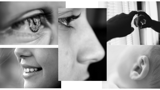 autism sensory strategies five senses