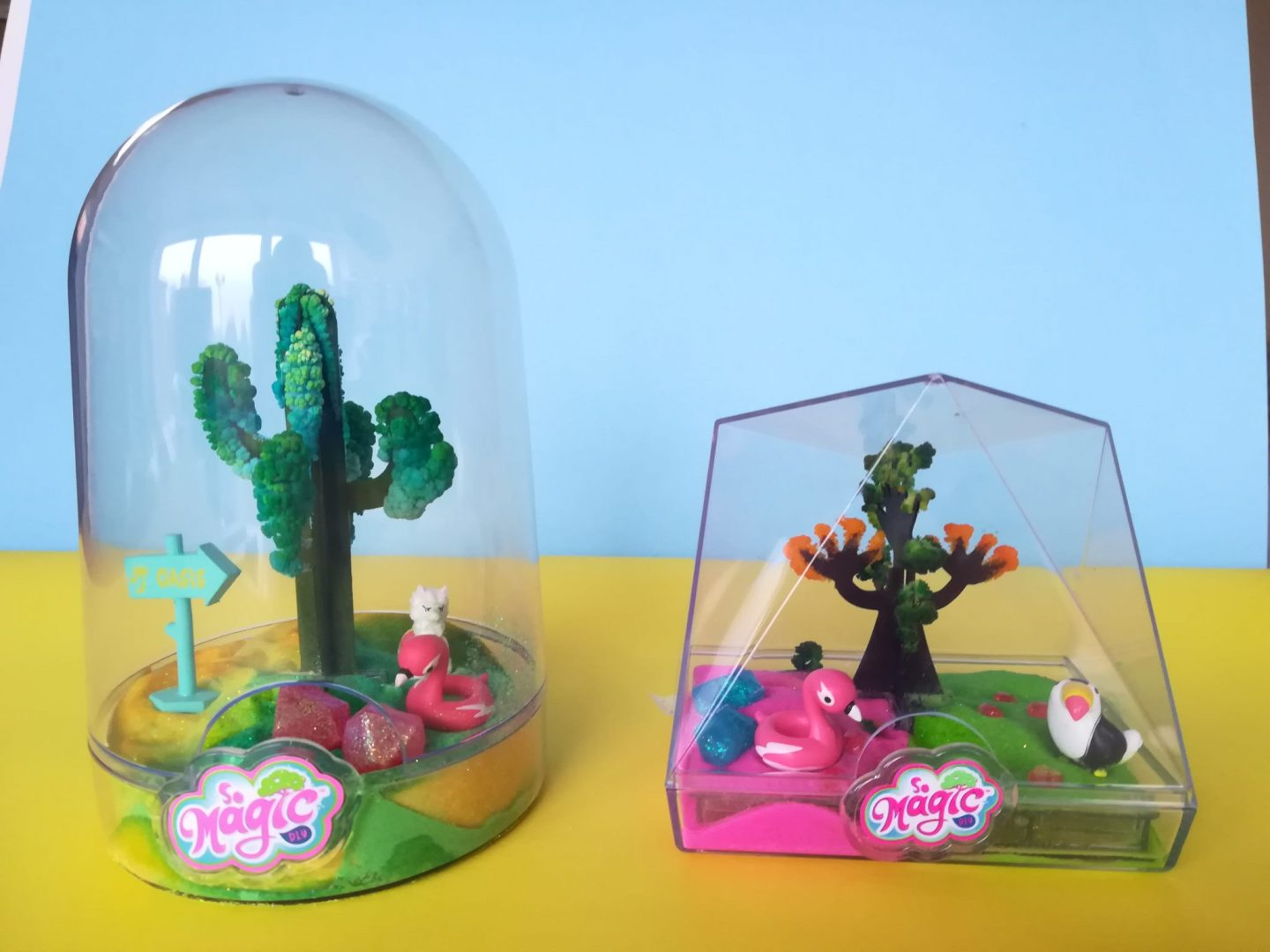 Magic Terrarium Review