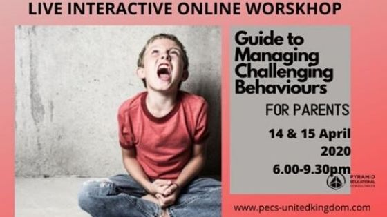 Challenging behaviour workshop flyer