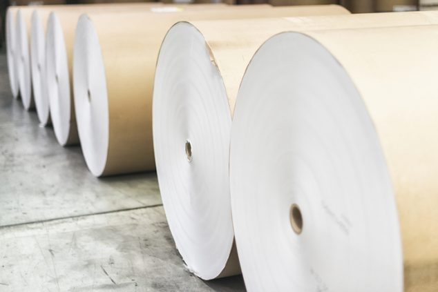 The papermaking process results in rolls like these