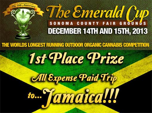 EmeraldCup&Prize