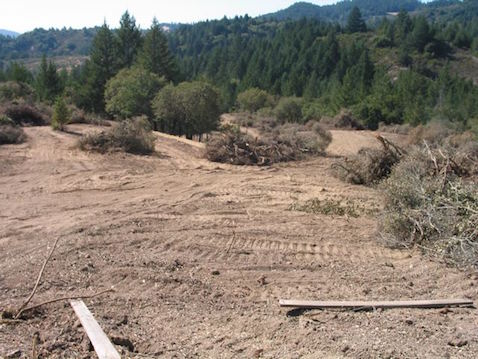 Cornell Vineyards on Mark West Creek, unpermitted grading, 2005. (photo credit: Friends of the Mark West Watershed )