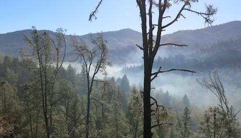Asphalt emissions filling Outlet Creek canyon