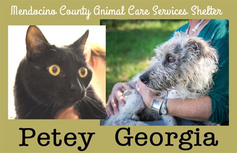 Petey&Georgia