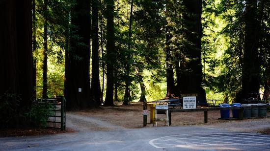 Mendo's AV Parks 'Needs Assessment'