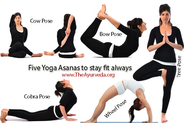 five yoga asanas to stay fit always