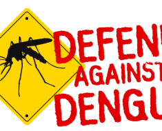 Say no to Dengue