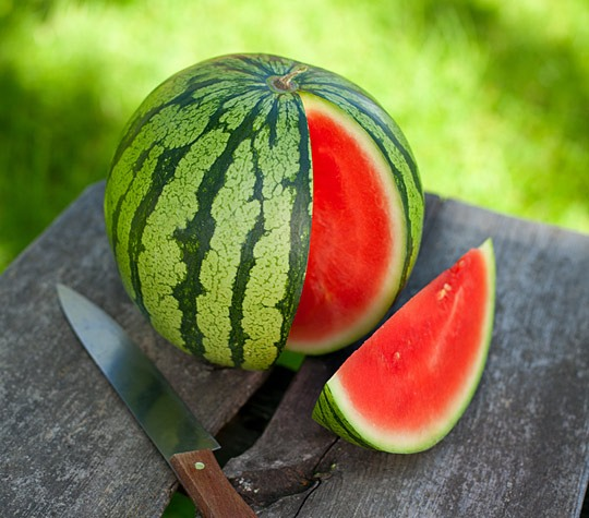 Watermelon to cure Obesity