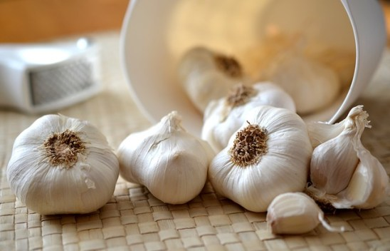 Garlic herb as a painkiller