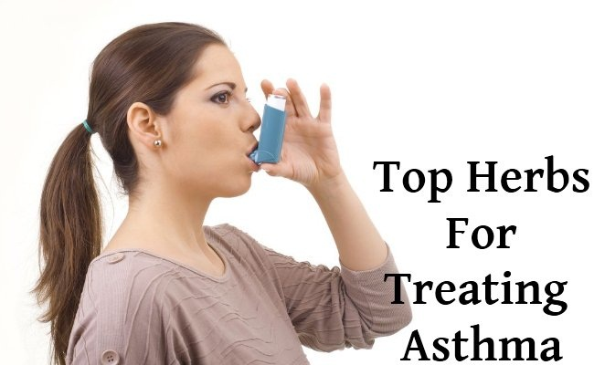 Top-10-Herbs-For-Treating-Asthma