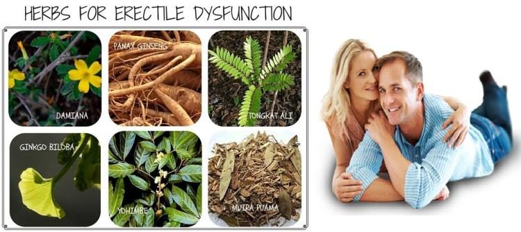 herbs-erectile-dysfunction-impotence-img