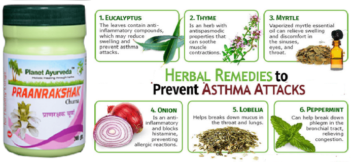 ayurvedic-treatment-for-asthma