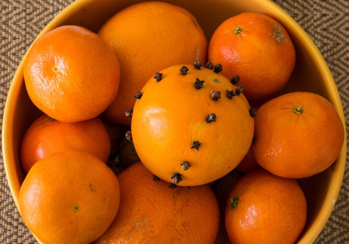 orange and cloves for flies