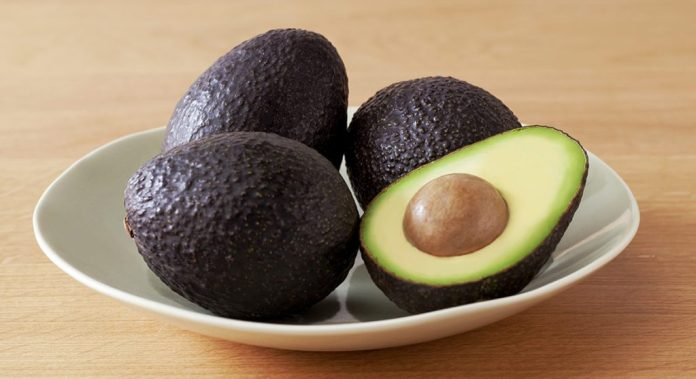 healthy avocado fruit