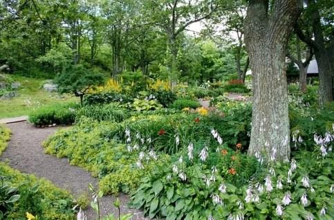 garden path woodland