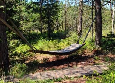 hammock green