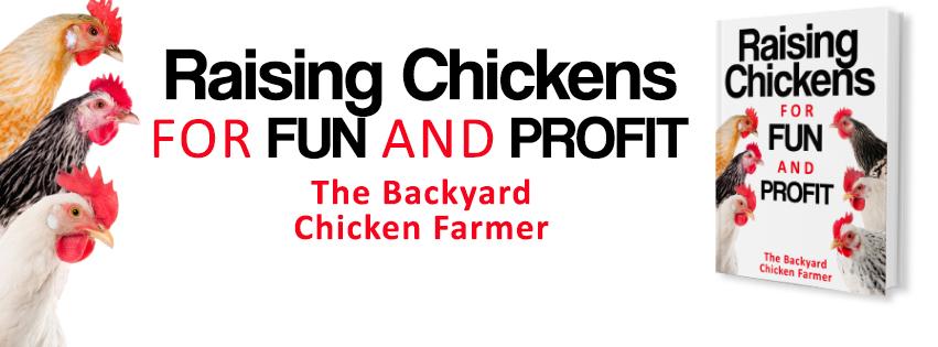 raisingchickensbanner