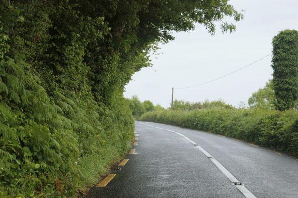 DRIVEBY- IRELAND COUNTRYSIDE