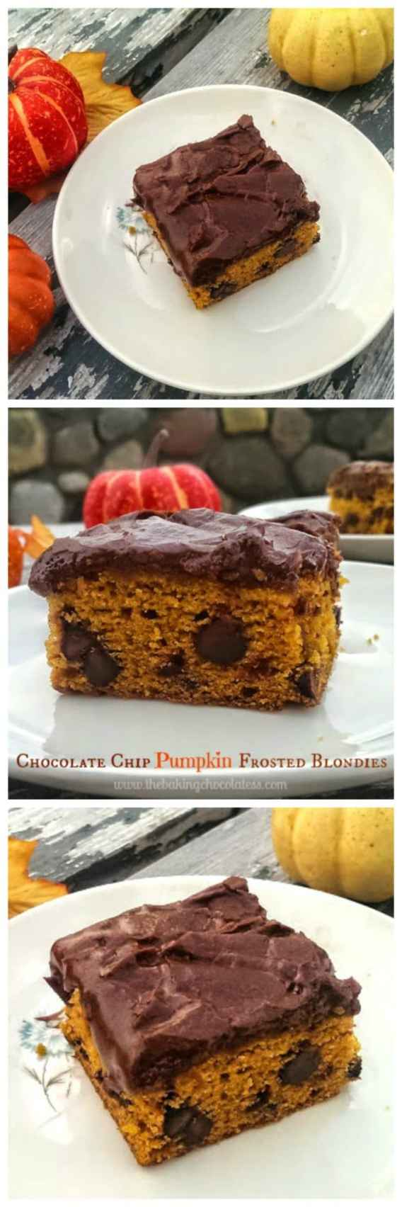 Chocolate Chip Pumpkin Frosted Blondies