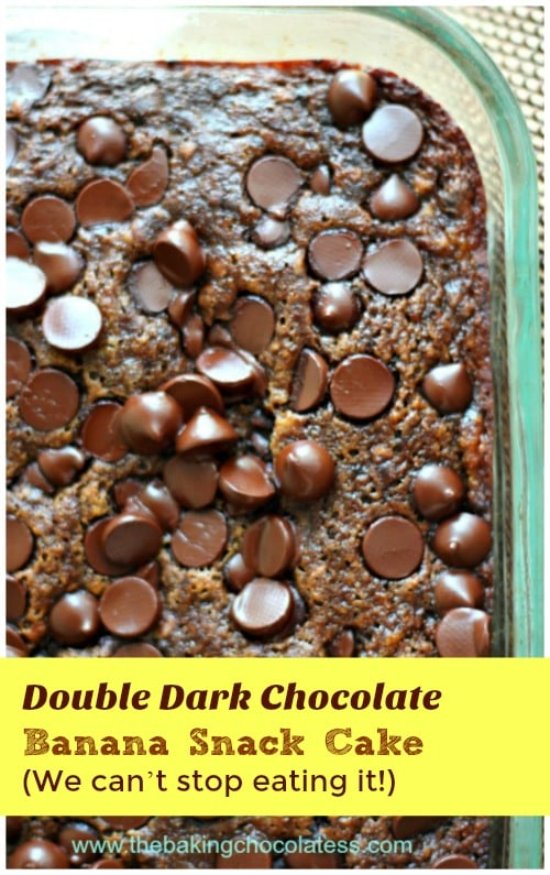 double-dark-chocolate-banana-snack-cake-we-cant-stop-eating-it-image
