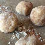 Snickerdoodle Cookie Dough Protein Bites