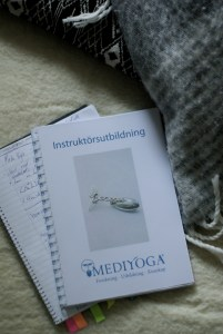 imgp3749  Opening a new door - becoming a MediYoga teacher. IMGP3749 1