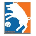 BallHog Logo