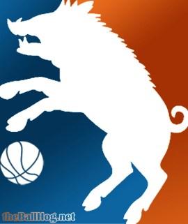 Ballhog logo 2015-16 test 2