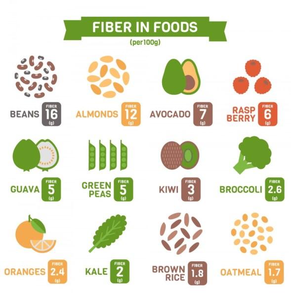 fiber foods fat loss