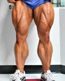 Eric Fankhouser calves